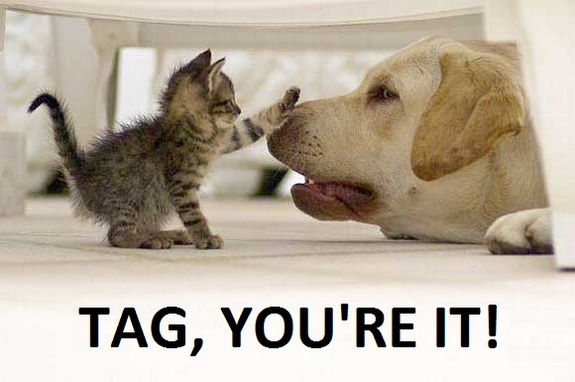 Tag, You're It!  The Importance of Tagging in Social Media Engagement