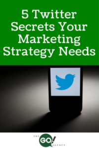 preview-chat-5-Twitter-Secrets-Your-Marketing-Strategy-Needs-200x300
