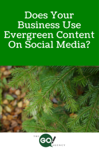 Does Your Business Use Evergreen Content On Social Media?