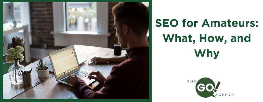 SEO for Amateurs: What, How, and Why